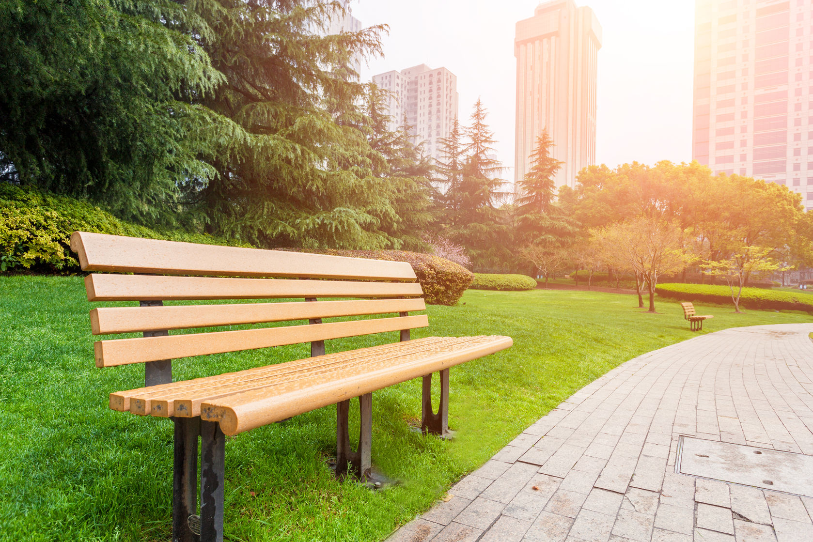 empty park bench in park